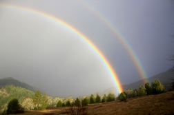 Pucker Huddle Double Rainbow