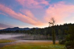 RandleFog-sunrise_7242-