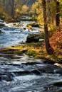 Trout Creek_1394-2