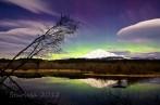 Aurora_Lennies-wo-9343