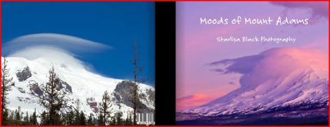 Front and Back Cover of the new book