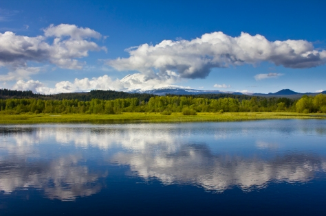 Trout Lake Reflections