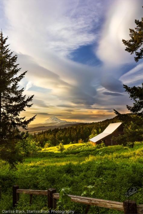 """Land of the Light""  Mount Adams"