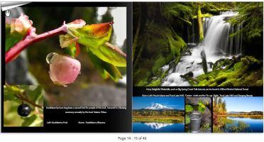 TL4th_page_14-15