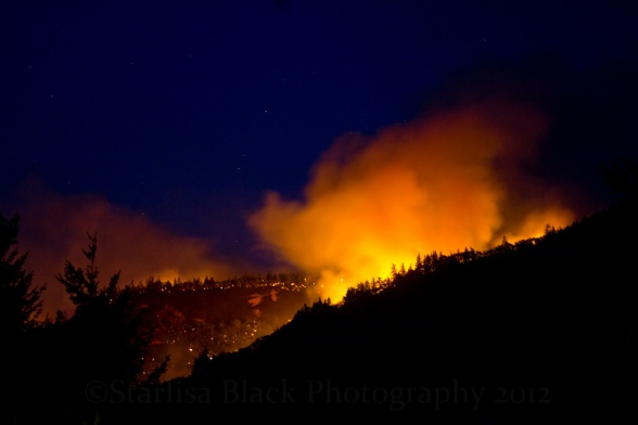 WS_ Wildfire-9143