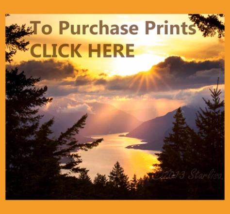 SunsetPurchaseLogo