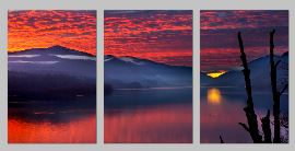 firecracerSunset triptych - Copy
