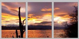 lennieCarnival triptych - Copy