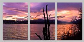 LennieSunset triptych - Copy