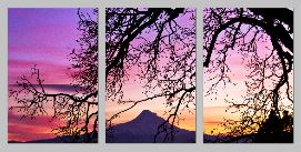 NaturallyFramed triptych - Copy