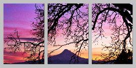 NaturallyFramed triptych - Copy
