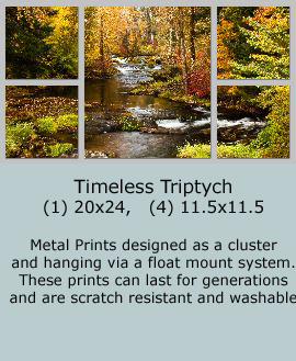 TroutCreekAutumn Timeless-triptych2 - Copy