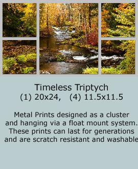 TroutCreekAutumn Timeless-triptych2 - Copy