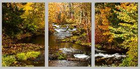 TroutCreekAutumn triptych - Copy
