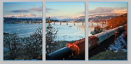 winterTrain triptych