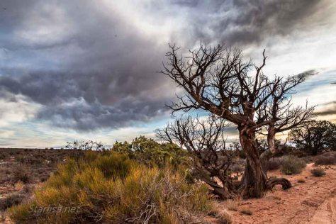 Arches Mammatus clouds