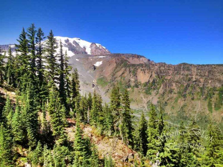 ClimbersTrail-iPhone-3130