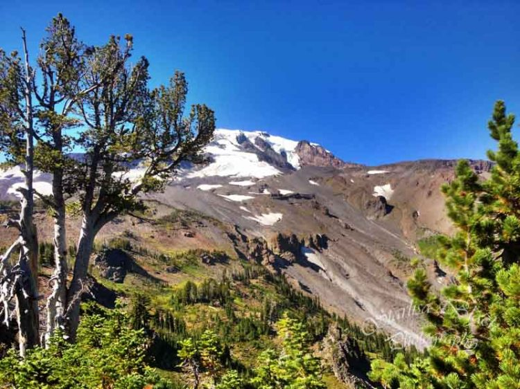 ClimbersTrail-iPhone-3161