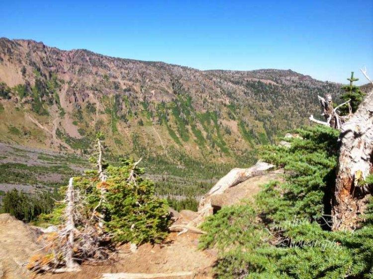 ClimbersTrail-iPhone-3165