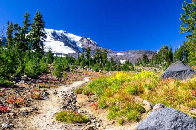 Mount Adams Hellroaring Trail_0785