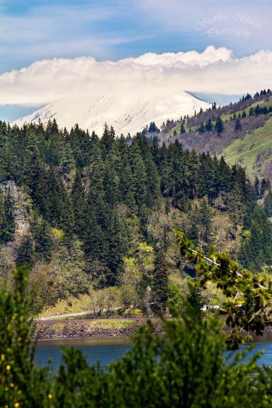 Mount Adams from Hood River