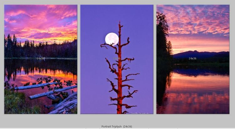 PortraitTriptych-sunsets_moon