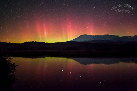 A few times this month we have had Aurora activity in our area, but this one on October 8-9 is the only one I caught so far.  Taken about 1:18 am at Trout Lake, Washington overlooking Mount Adams.