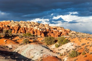 Arches-NP_web-8532