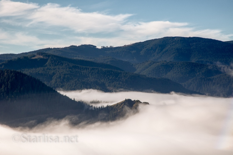 Fog and Mitchell Point_0420-1