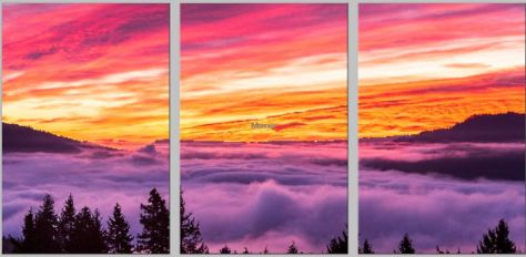 "This Triptych is being printed on Metal, and each panel is 16x24"" in size, giving a combined wall size of 50x24""  Cost to purchase such a display of this or another image would be $690.00.  The metal prints are Brilliant color that last for generations, ready to hang, scratch resistant and washable with window cleaners."