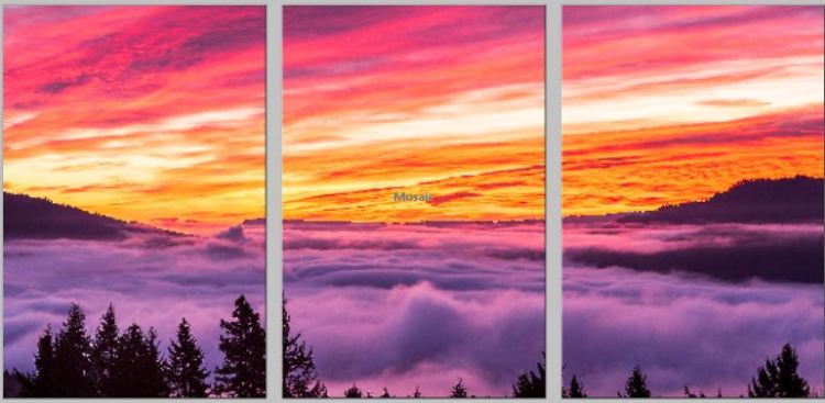 "This Triptych is being printed on Metal, and each panel is 16x24"" in size, giving a combined wall size of 50x24"".  List price to purchase such a display of this or another image would be $690.00.  The metal prints are Brilliant color that last for generations, ready to hang, scratch resistant and washable with window cleaners."