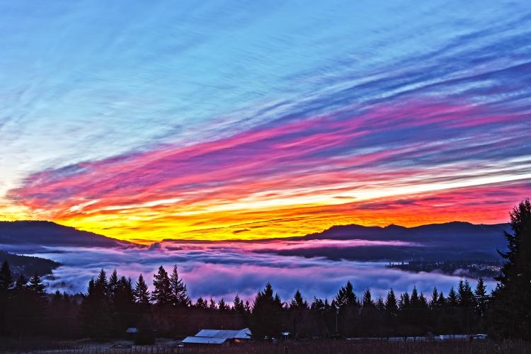 Over the Fog Sunrise-9967