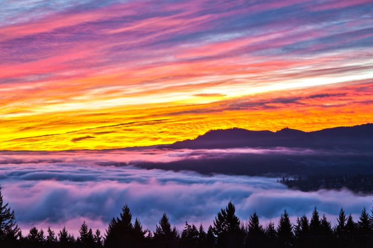 Over the Fog Sunrise-9988