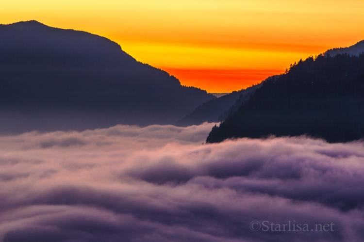 Over the Fog sunset_4799-5