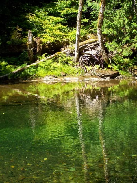 Lewis River, famous for it green color, was a home every summer in my growing up years.  I can feel the presence of my loved ones in this magical place.