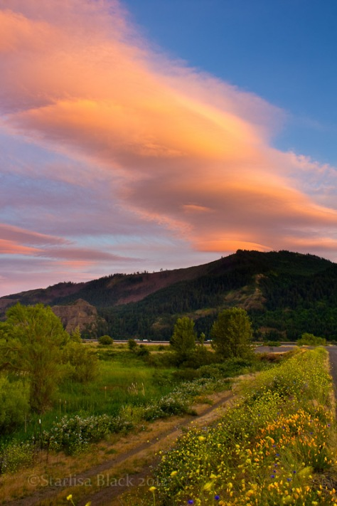Orange sunset clouds over green marshland along the Columbia River