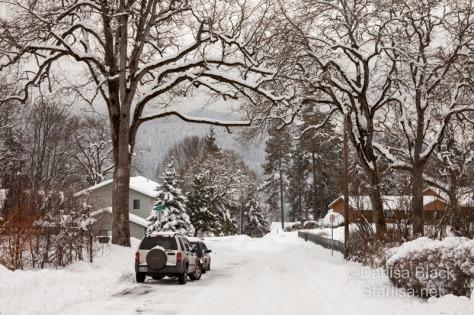 SnowDay_Feb10-3709
