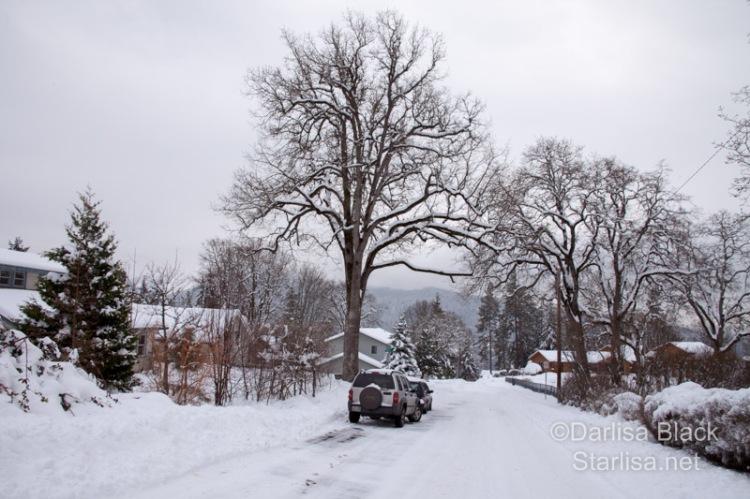 SnowDay_Feb10-3714