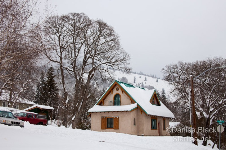SnowDay_Feb10-3717