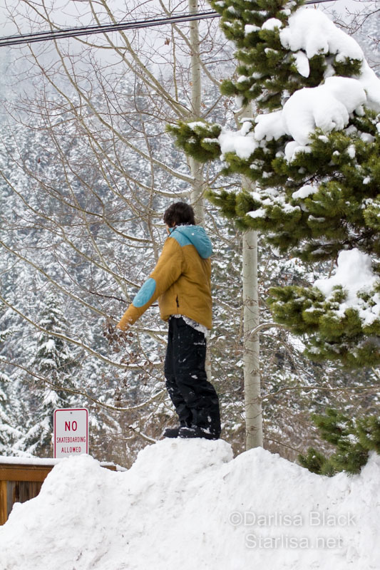 boy stands tall at the top of a pile of snow, King of the mountain!