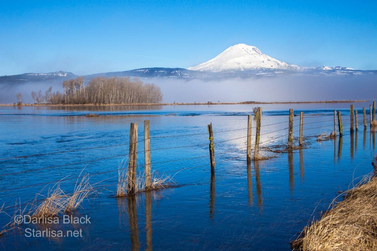 For a short time in spring and fall this high altitude praire often floods, looking like a lake for a few weeks.  This road disappears under water during that time. Mount Adams shines through the fog across the Kreps Ranch and the Conboy Lake National  Wildlife Refuge.  Photo by Darlisa Black of Starlisa Black Photography