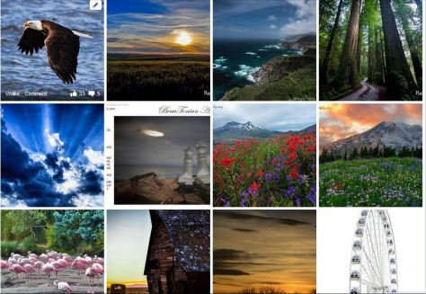 CLICK TO SEE THE FACEBOOK PHOTO ALBUM!  This is a small number of over 140 images being bidded on in the #artforoso photography auction fundraiser on Facebook.