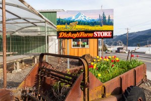DickeyFarmStore_9807