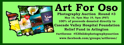 Art For Oso Photography Auction Fundraiser
