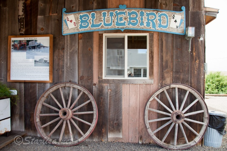 Bickleton_BluebirdCafe-4783