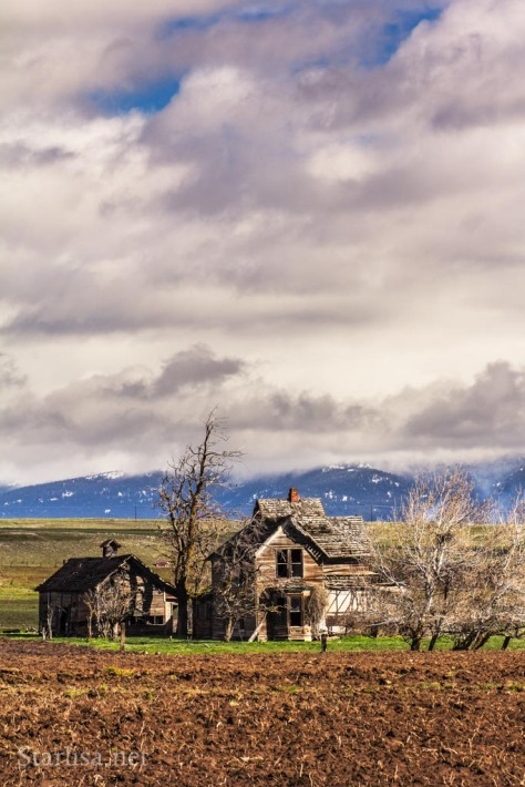 Old Homestead in early spring near Goldendale, Klickitat County,  Washington