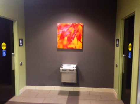 This image of mine is part of a new art installation at the University of Toledo Medical Center