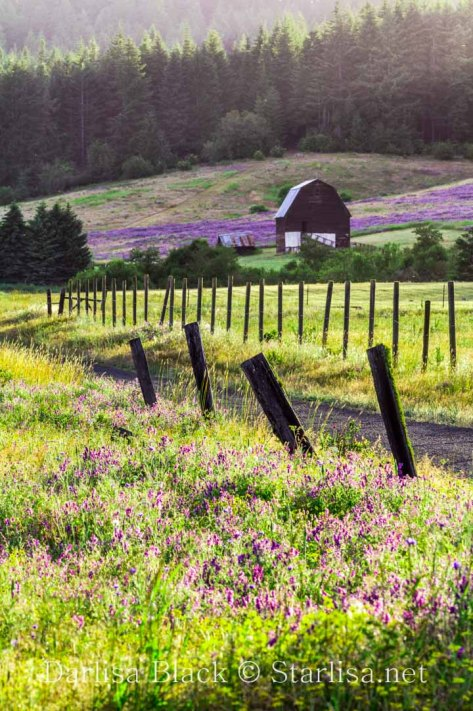 The old Billette Farm above White Salmon in Klickitat County.
