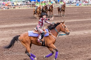 Ketchum Kalf Rodeo 7087