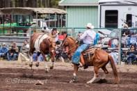 Ketchum Kalf Rodeo 7306